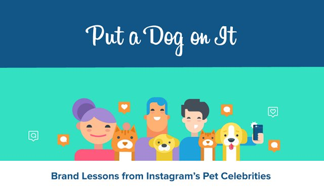 Put A Dog On It: Brand Lessons From Instagram's Pet Celebrities [Infographic] https://t.co/TTH0PGJbpT https://t.co/WVxCuveM0V