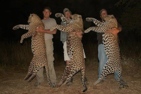 "#WeirdThingsICantUnderstand how people can shoot #animals for ""fun"" ban #trophyhunting ban #cannedhunting https://t.co/0FaRBlimbI"