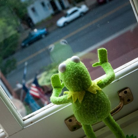 Meanwhile... #Jets fans still waiting for Fitz to come home. https://t.co/kqXPsmU6oy