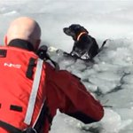Heroic deputies pull dog trapped for five days from icy reservoir waters: https://t.co/mlVdY52m2b https://t.co/FbT7TjYJwi