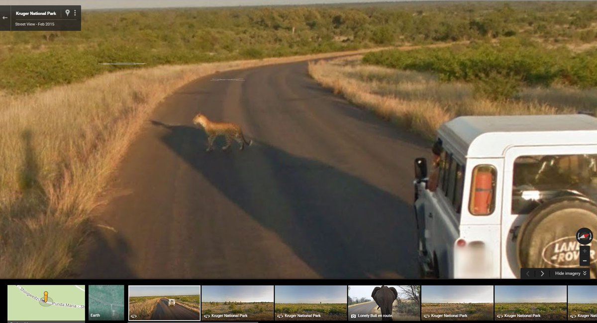 RT @SAA_UK: Spot a leopard with this Google virtual safari of SouthAfrica  FlySAA KrugerNationalPark https://t.…