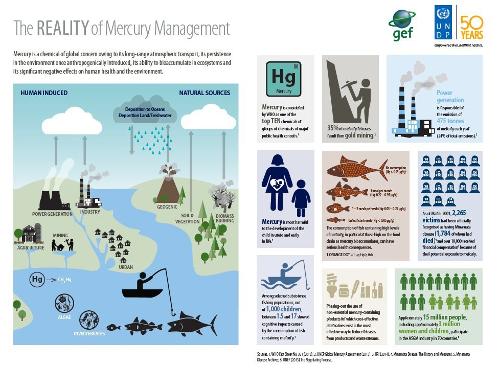 #MinamataConvention matters to protect us from mercury poisoning. More @minamataMEA #INC7 https://t.co/986mnF4u9B