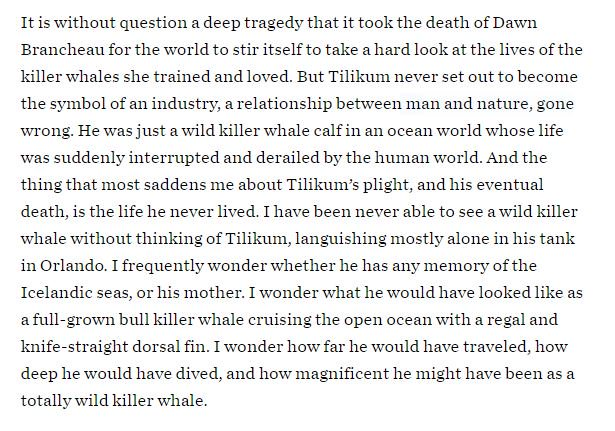 """""""I wonder how far he would have traveled, how deep he would have dived, """" #OpSeaWorld https://t.co/maUJo5Awt0"""