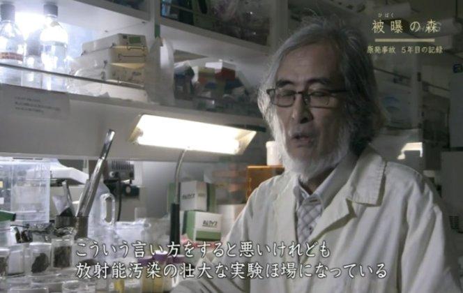 5年間、福島の汚染された森を調査する東大、森敏。「こういう言い方は悪いけども、放射能汚染の壮大な実験圃場になっている」ーー実験対象は、動植物だけでなく人間も含まれる。奴らの本音では福島だけでなく、日本全体が人類未踏の実験場だ。 https://t.co/XBkuyuEoW9