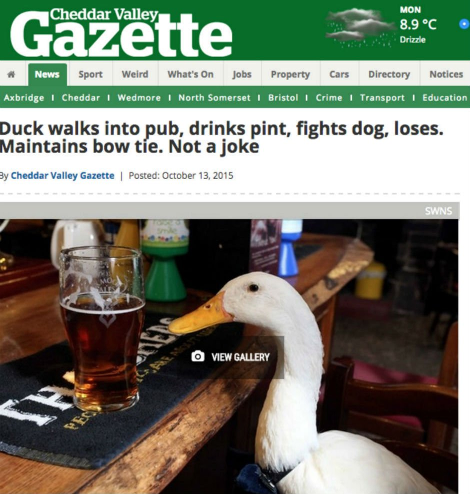 The 11 most wonderfully British headlines of all time