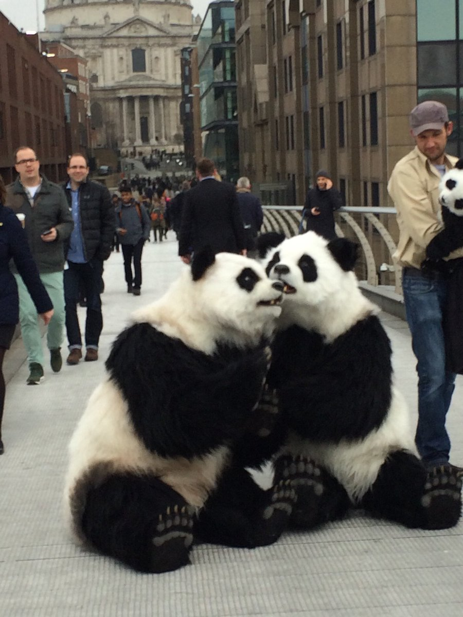 Our pandas are seeing the sights before our #Pandamonium live show later this month. Keep your eyes out for them! https://t.co/Ab3GnxlriT
