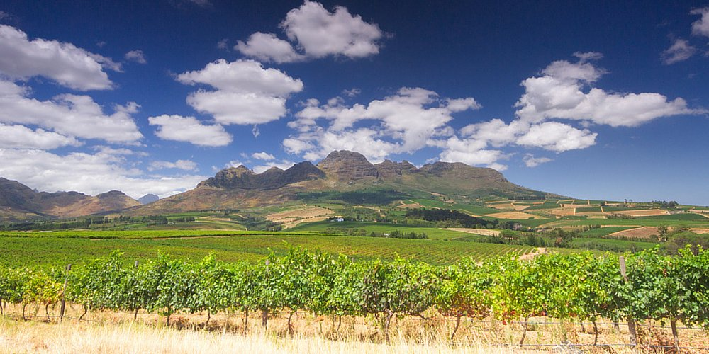 Think you can't afford a trip to South Africa? Not so, says @travelleisure »