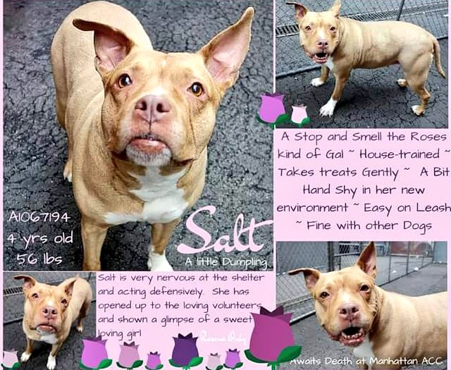 #NYC  NO interest in this throw away mama