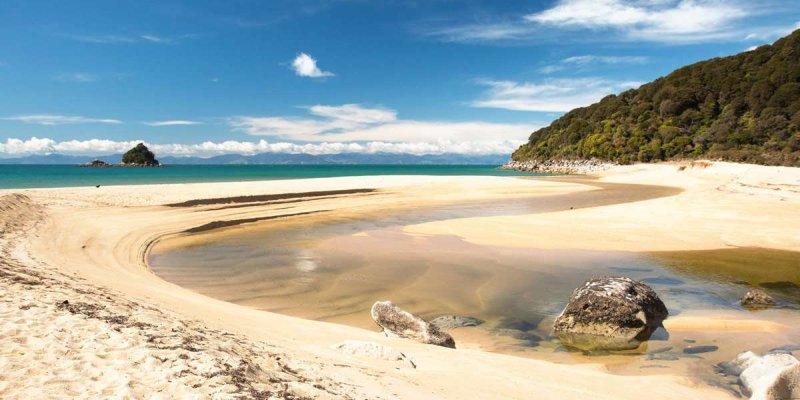RT @wildsidenz: New biodiversity project in Abel Tasman launched by @FlyAirNZ, DOC & Manawhenua ki Mohua: https://t…