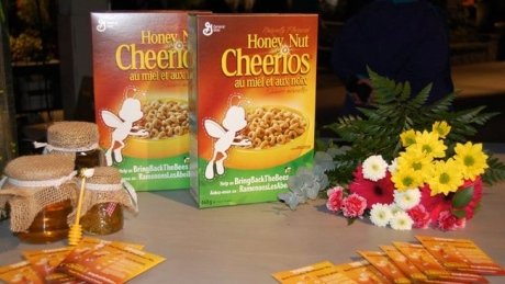 P.E.I. company partners with Honey Nut Cheerios in campaign to save bees https://t.co/NF2W5HH74D https://t.co/IBUFhGw5Gx