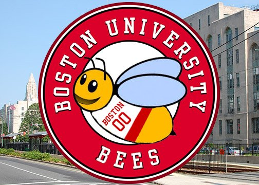 We are very excited to announce Bub the Bee as the new mascot of Boston University! Remember: bee you! https://t.co/mRIHj1xYpt