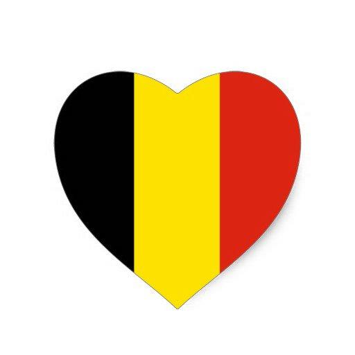 Todo nuestro apoyo a los afectados por el atentado en Bruselas. #JeSuisBruxelles #NoAlTerrorismo https://t.co/3iizdX4120