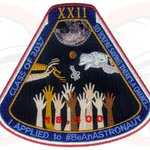 RT @collectSPACE: 'So you say there's a chance': @YurisNight offers space patch for #BeAnAstronaut applicants: https://t.co/j1rCsSDScD http…