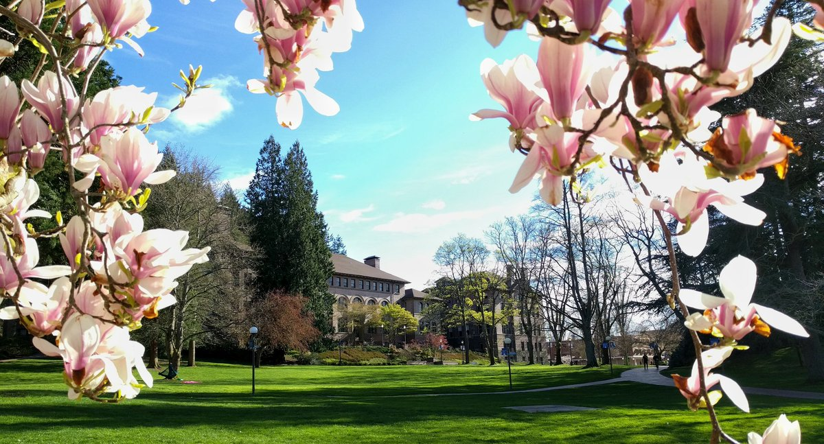 Gorgeous afternoon on campus! #springatwestern https://t.co/qgY9YDDPMA