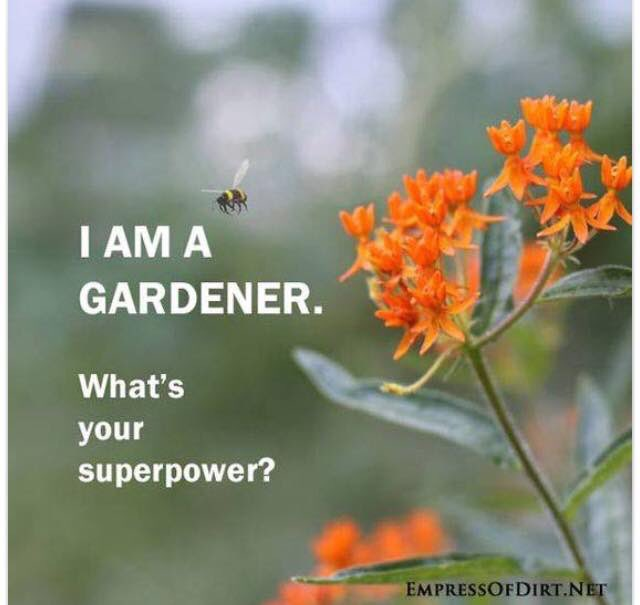 Love this from @empressofdirt #gardenchat https://t.co/fVhuESXacs