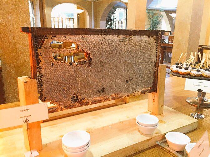 ギリシャの朝食名物「各自ハチの巣をご自由におつつき下さい」きたーー!!!これを水切りヨーグルトにかけて……食らう!ああーー!私いま、最高にギリシャにいる!!! https://t.co/GLFBMP6f7K