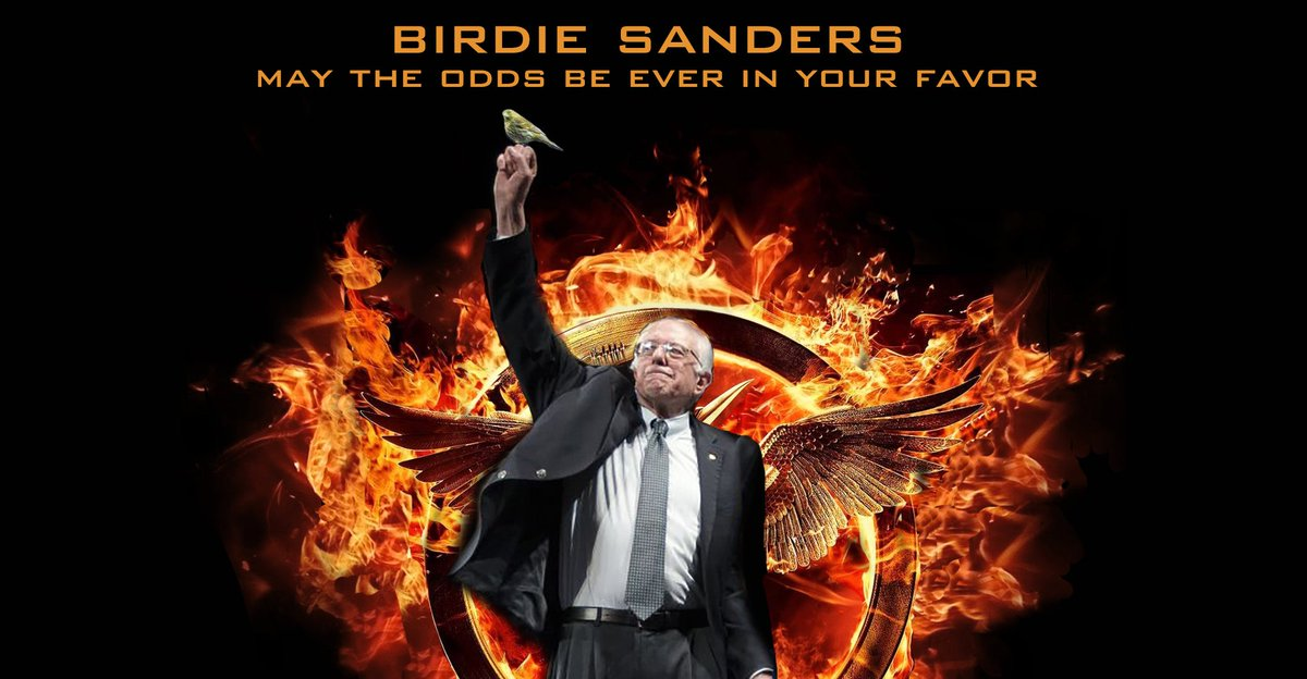 May the odds be ever in your favor. #BirdieSanders https://t.co/IfcTCE1vo8