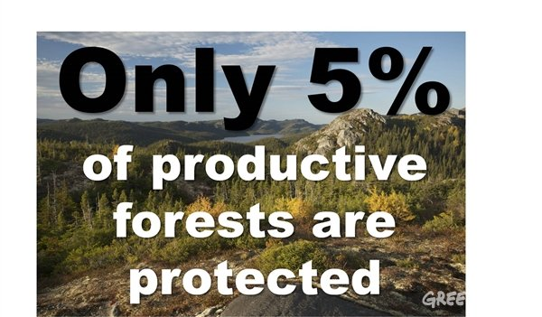 RT @GreenpeaceCA: 6 jaw-dropping facts about Canada's forests >> https://t.co/7hqgPlcrg6 #StandForForests https://t.co/s50EJ2dia1