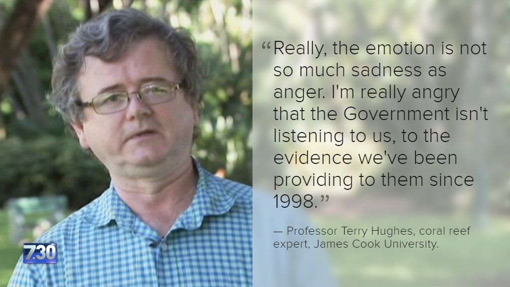 Coral reef expert Professor Terry Hughes says of the 520 reefs surveyed, only four showed no evidence of bleaching https://t.co/8Tiadyc27a