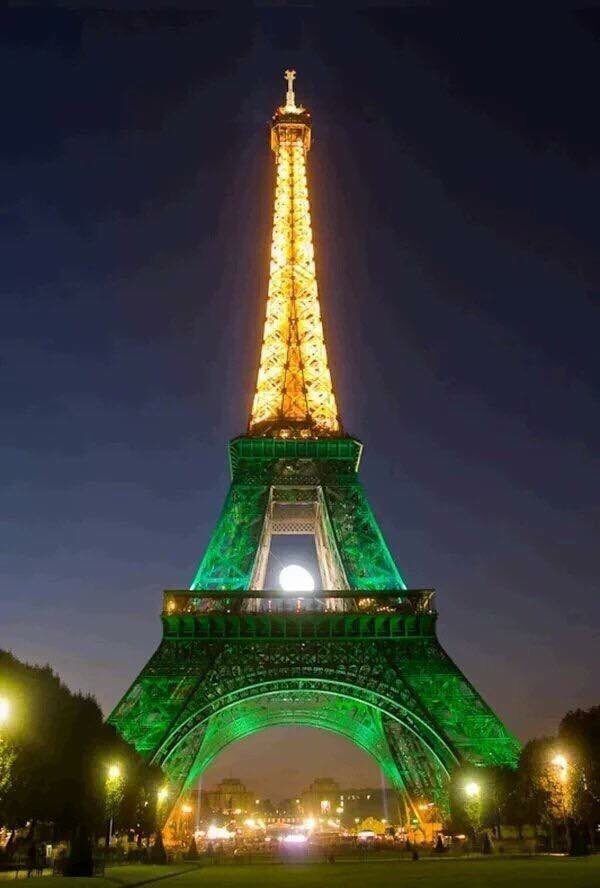 Eiffel Tower lights up in Pakistan colours showing solidarity with all HUMANS effected by terror #PrayForLahore https://t.co/FkPIesS2fV