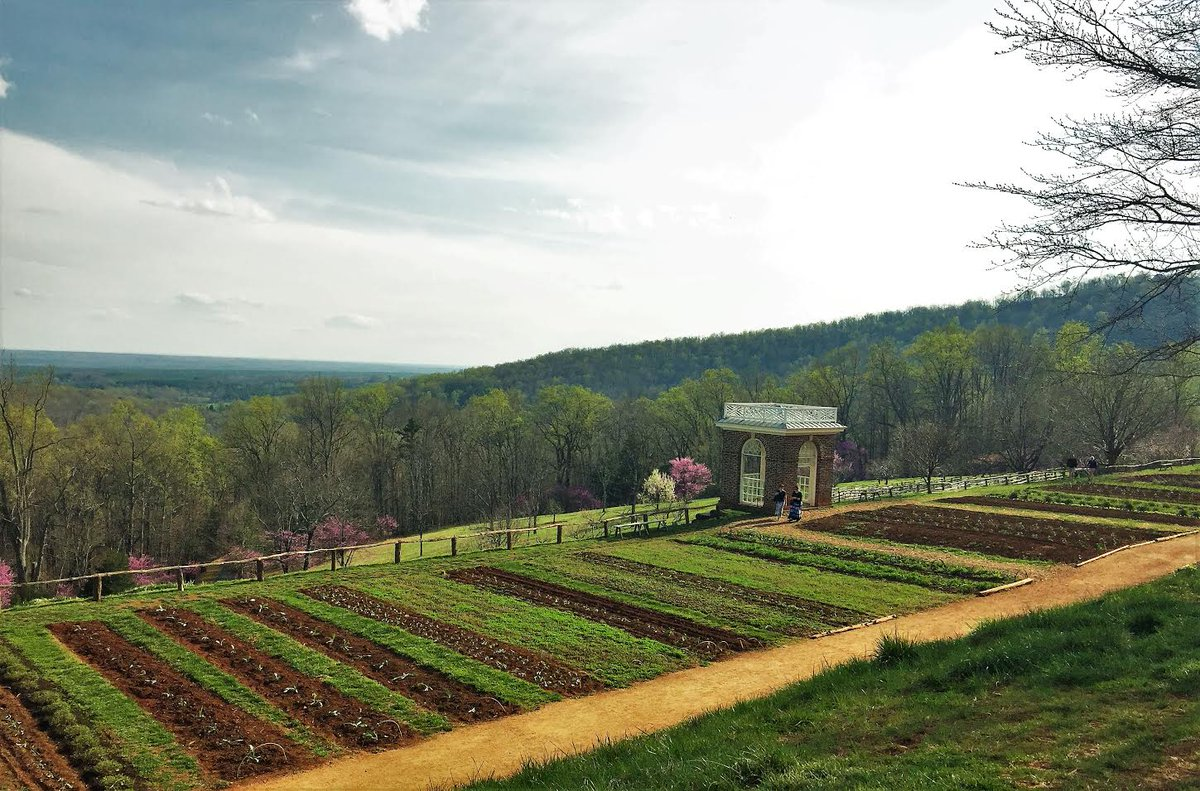 It's all getting started in the Vegetable Garden and Orchards! Photo by Monticello Guide, Bill Bergen. https://t.co/n7qpMXAmw9