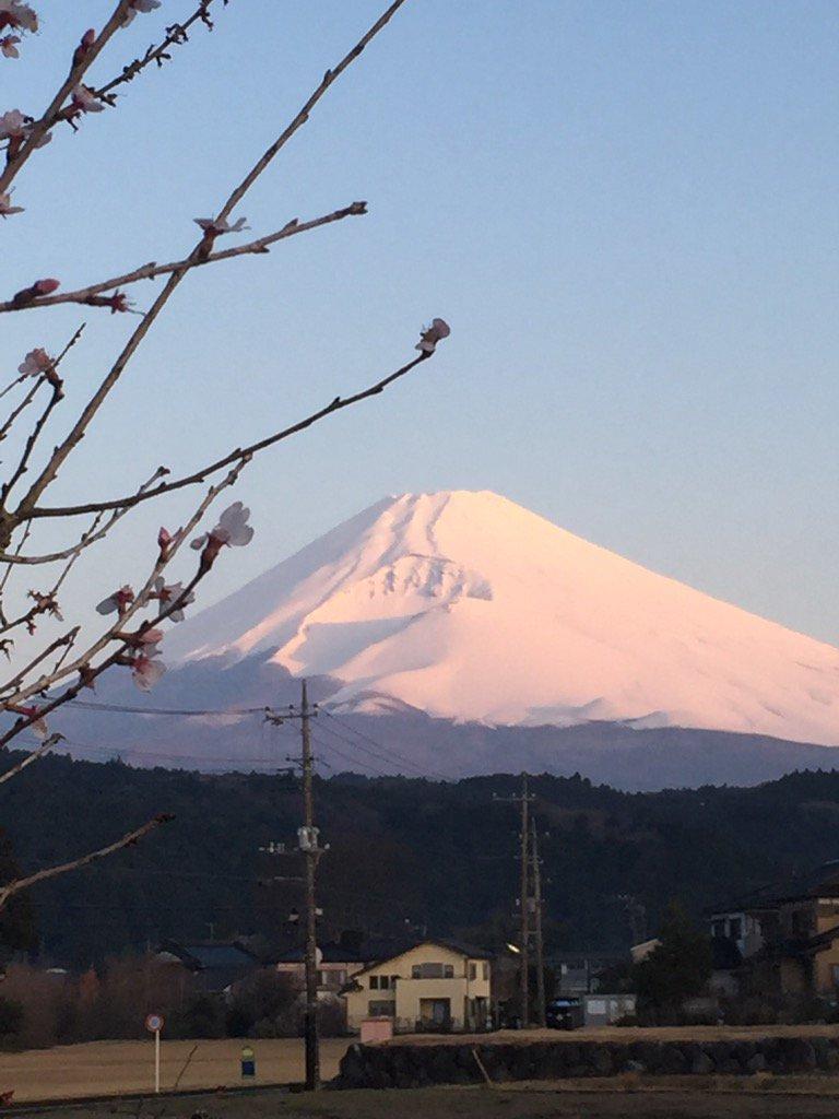 おはようございます。今朝の今の富士山です。毎日見ていますが、今朝は特に素晴らしいです。昨日の豪雨と雷で浄化された様子です。 https://t.co/2gAAyxs5ie