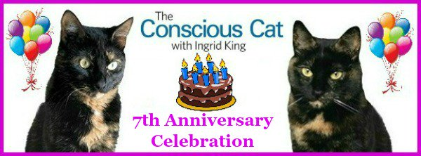 Only 3 days left to enter to #win one of 7 Grand Prizes! https://t.co/FTHpWz0L0Y #giveaway #cats https://t.co/g2ajSrg90J