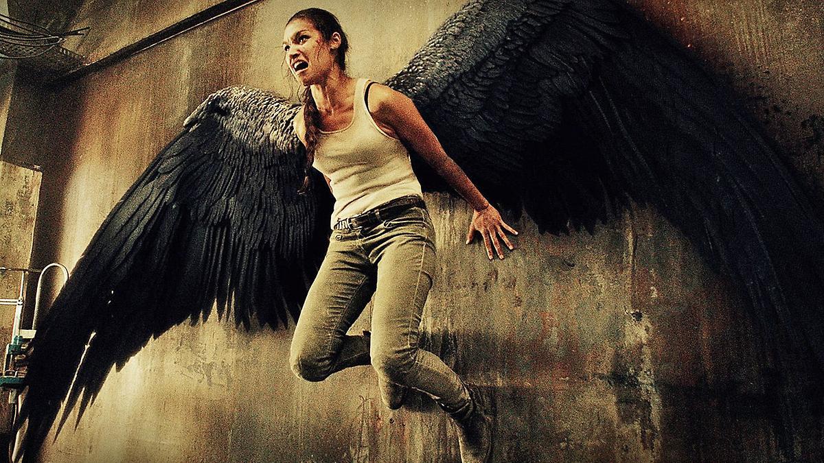 Zu Viele Engel