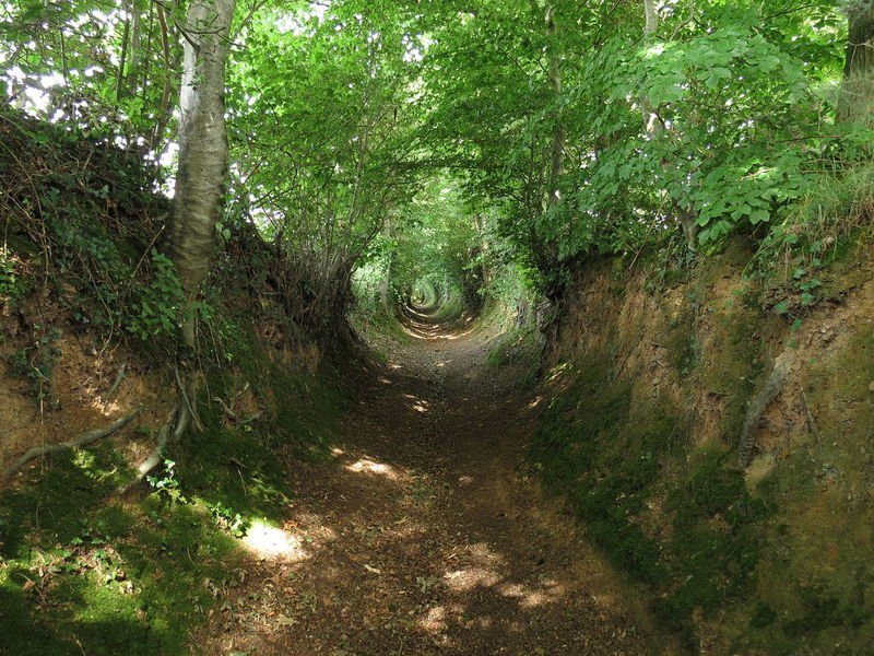 I could look at holloways--roads tunneled into the earth by time--all day. https://t.co/XYoiz2YvXn https://t.co/d6EgImEktv