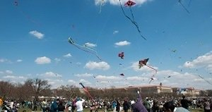 RT @washparentmag: The @CherryBlossFest Kite Festival is Saturday!