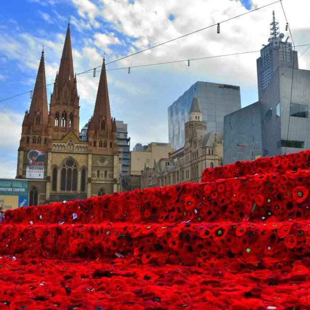 RT @RSL_National: 5000 Poppies Project is about to leave Australia for Chelsea Flower Show @Qantas @johnerenmp http…
