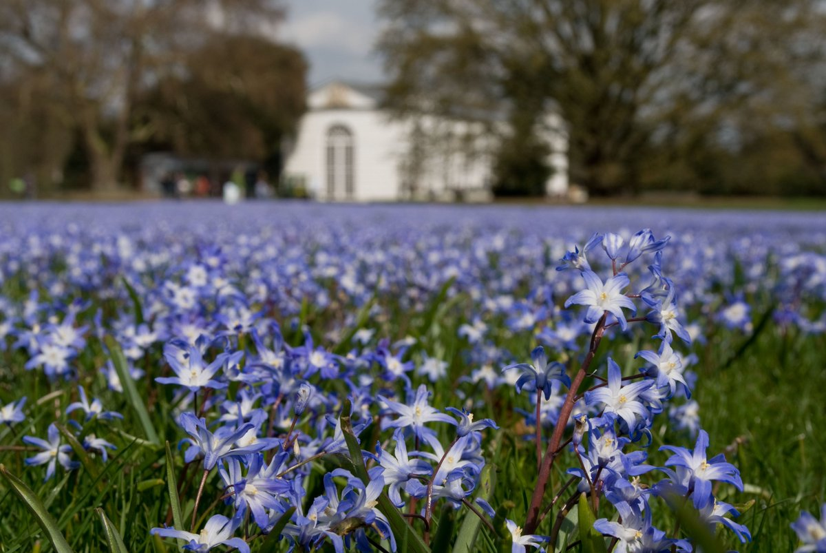 See the sights of #SpringAtKew with all the family! Follow & RT for chance to #win https://t.co/SxfRwDbFdy https://t.co/fr2RGrmQgq