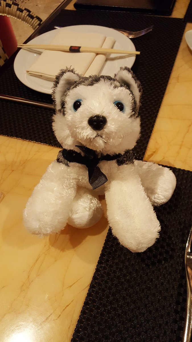mgoldman713: @SnowdogApps fun at #MagentoImagine https://t.co/3ESkpyjC6M