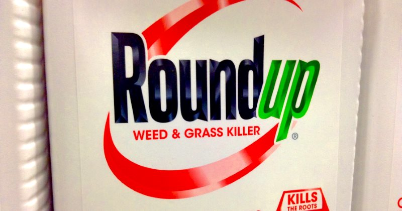 #EU Parliament votes to ban most uses of #glyphosate . #Monsanto #Roundup The Ecologist https://t.co/hm0siwQqjX https://t.co/JIpLo20jky