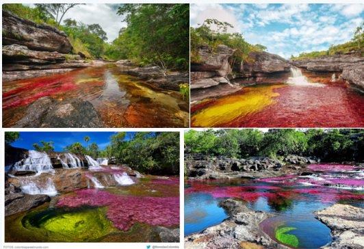 """No solo sería una derrota de Colombia, sino del planeta, perder """"el río más hermoso del mundo"""" #LaMacarenaNOseToca https://t.co/LqSCIwZyXf"""
