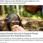 Why wont @MetLife speak up for #ChimpsBetrayed by @NYBloodCenter? CitiGroup did: https://t.co/I1WspNUwk1 https://t.co/CUksVhvNuL @jpmorgan