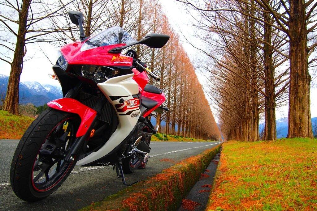 ばくおん!!の影響でバイク買いました!将来はS1000RRに乗りたいと思ってます!