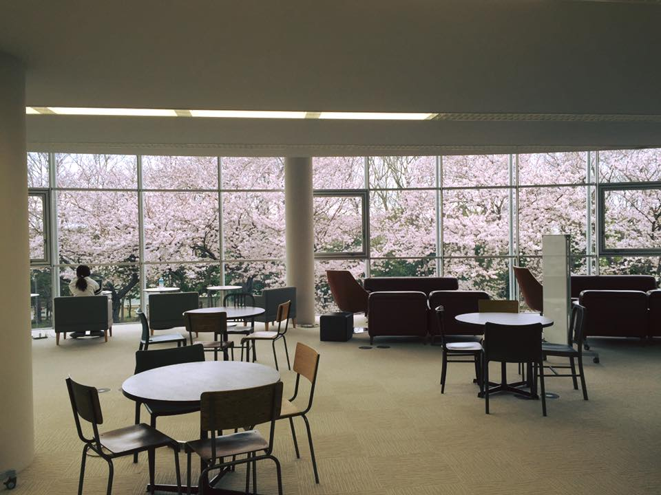 SFCの大学院棟は、2階が桜のパノラマ。春はここで執筆とかしたい。 https://t.co/uhV9wQDoQG