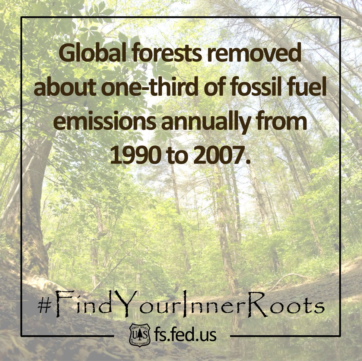 Another #TreeFact for you. Did you know how important trees are to fighting emissions? #FindYourInnerRoots https://t.co/8HwvNfQxlF