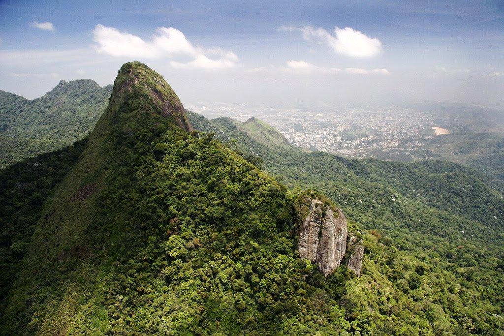 มาติดตามบทเรียนจากบราซิล เมื่อการฟื้นป่าคือการพัฒนาเศรษฐกิจ https://t.co/n1buOxa67z https://t.co/Dqf6GfvtwC