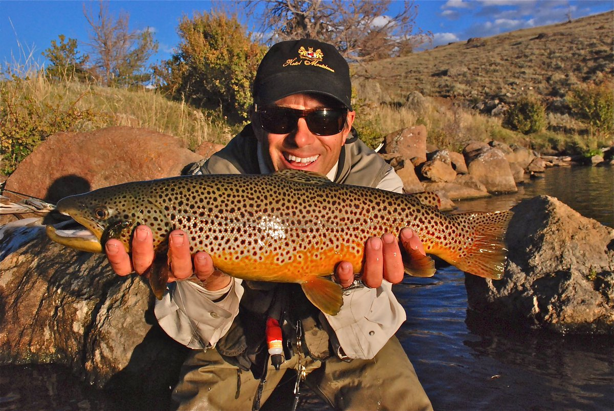 @ajsutts @Reelfinatics i can get Browns to eat. A function of time & fly/bait size. HUGE predators! #FishChat https://t.co/4982lYibYF