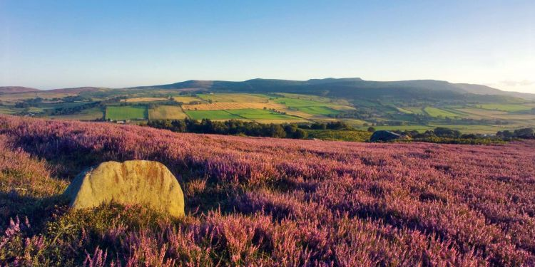 A very special Happy Birthday to Northumberland #NationalPark - 60 years old today! @NlandNP https://t.co/9gJ5PAKOQR