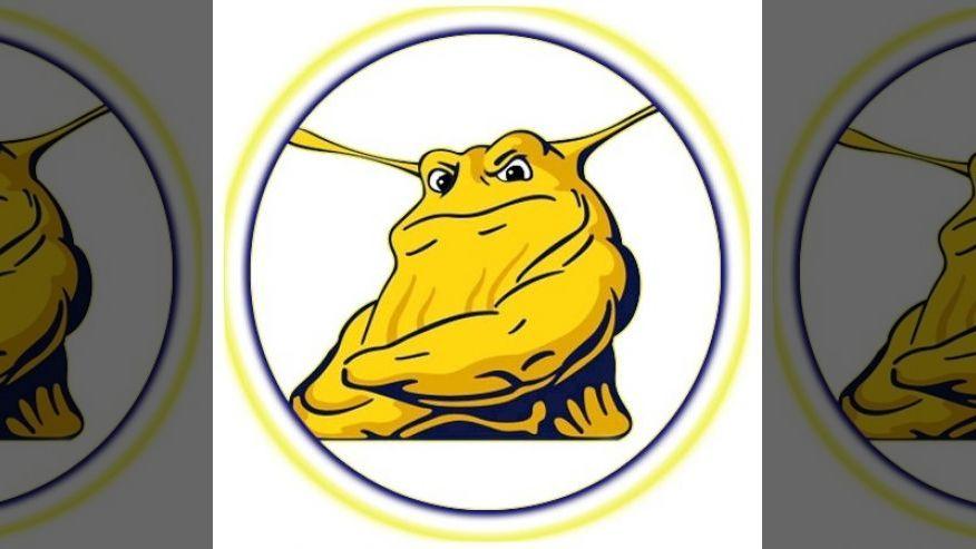 Look out, banana slug: UC Santa Cruz mulls scrapping NCAA sports: