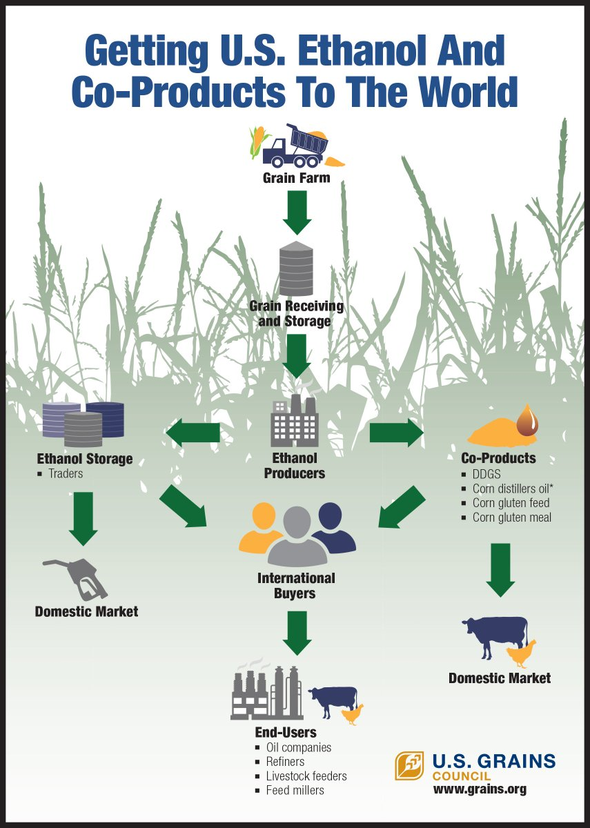 Learn how U.S. #ethanol and co-products move from farm to international markets. https://t.co/bJFhHlXLRn