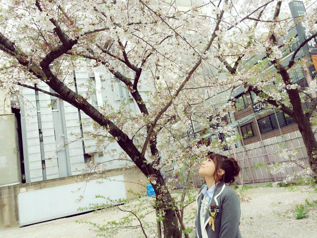 【AKB48】本・雑誌・書籍総合スレ36.1【新聞】©2ch.netYouTube動画>1本 ->画像>537枚