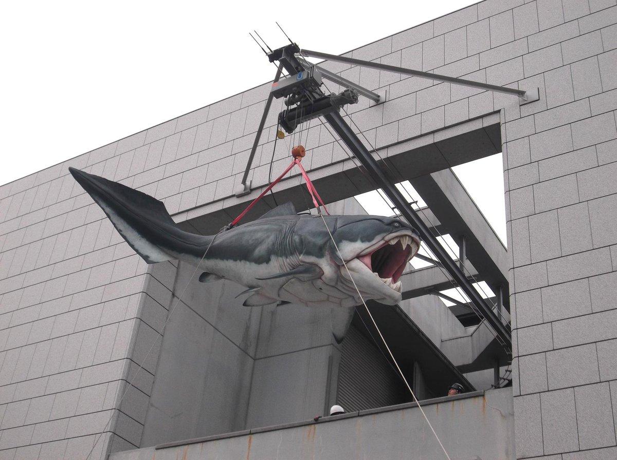 #生命大躍進 大阪展@大阪市立自然史博物館(長居公園内)、いよいよ来週4月16日(土)開幕です!今日はダンクルオステウスが博物館に到着!! https://t.co/HwkjrngJ0y
