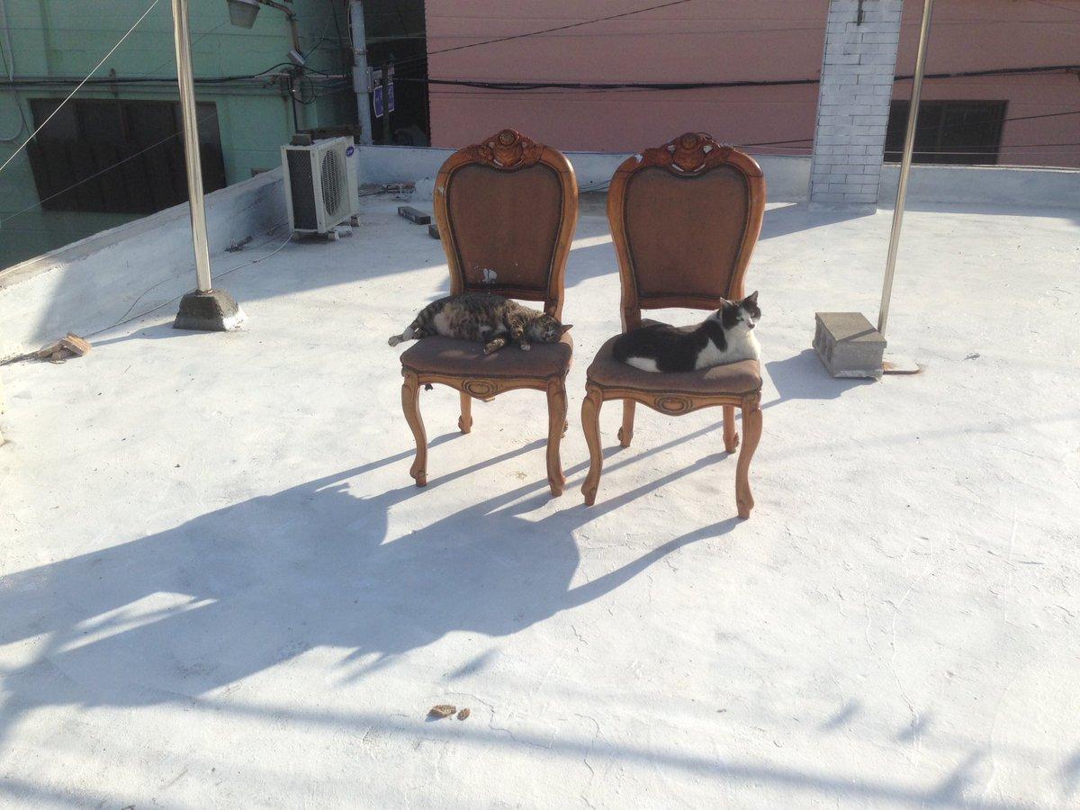 의자를 버리려고 했는데, 쓰는 이들이 있었다. https://t.co/mqiJIlS4Cv