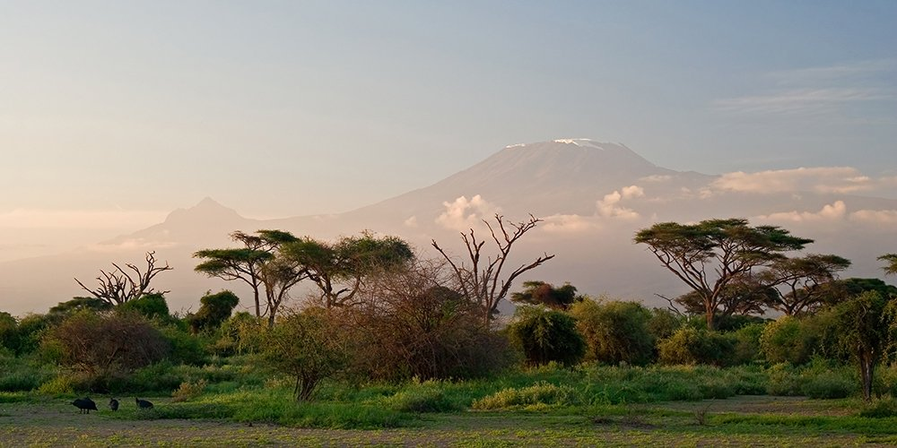 Tanzania has perfected the safari experience, according to @CNTraveler 👀