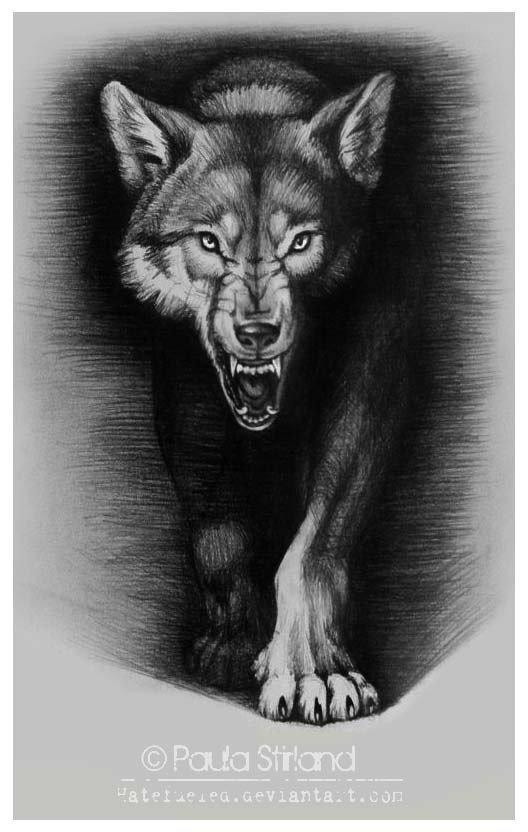 Тату оскал волка для девушек