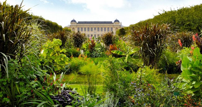 The Fabulous History of the Jardin des Plantes in Paris: https://t.co/z7zKn09L3E #Paris #history #garden https://t.co/6PTOtNTAzI